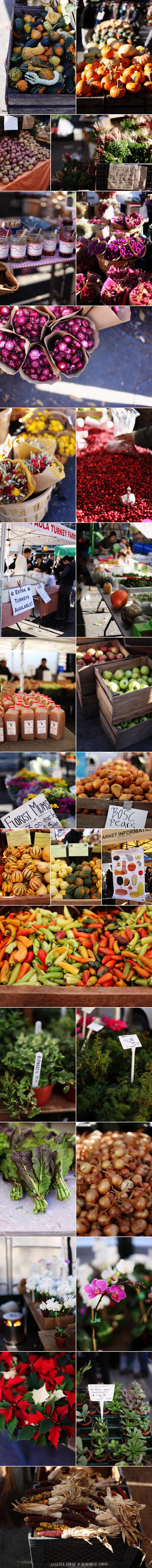 autumngreenmarket.jpg